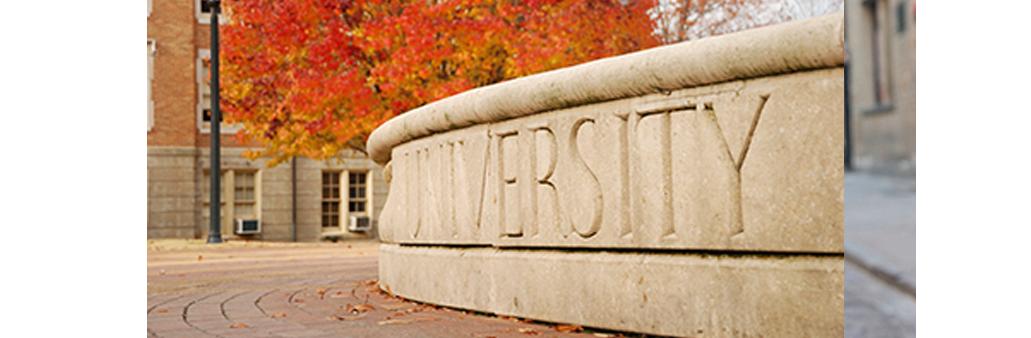 4-university